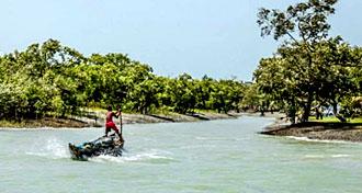 Tora Eco Resort Life Experience Center Bali Island Sundarban